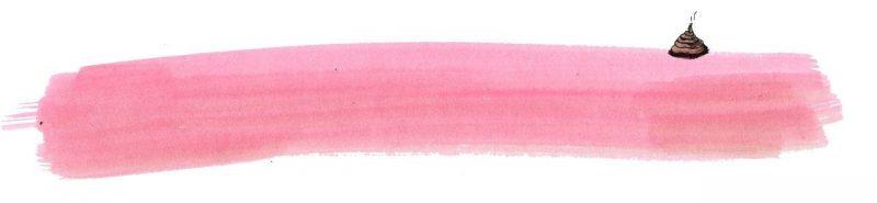 Illustratie door Jantien Baas: Over een kleine mol die wil weten wie er op zijn kop gepoept heeft – Werner Holzwarth & Wolf Erlbruch