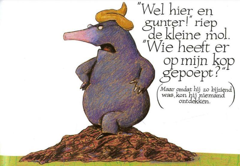 Over een kleine mol die wil weten wie er op zijn kop gepoept heeft - Werner Holzwarth & Wolf Erlbruch