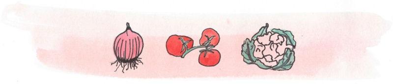 Illustratie door Jantien Baas: Praktisch handboek voor jonge tuiniers – Michel Luchesi & Bérengère Staron