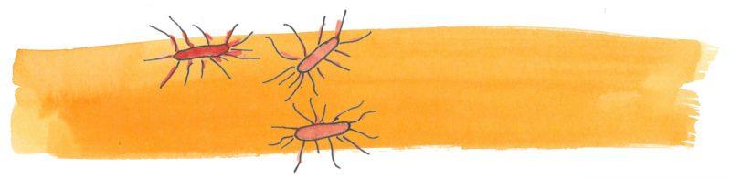 Illustratie door Jantien Baas: Coronavirus: Wat kinderen moeten weten – Axel Scheffler